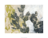 Leaf Spray I 限定版アートプリント : ジェニファー・ゴルトベルガー