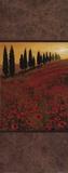 Poppy Field Panel II Prints by Steve Thoms