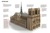 Infographic About Notre Dame Cathedral, Built in Paris Between 1163 and 1334 Poster