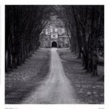 Cranbourne, Inglaterra Lámina por Charlie Waite