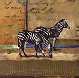 Serengeti Zebra Prints by Fischer Warnica