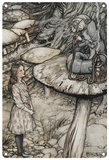 Alice in Wonderland - Caterpillar Advice Blechschild