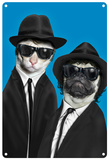 Pets Rock Brothers Carteles metálicos