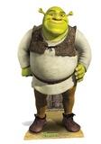 Shrek - Shrek Mini Cardboard Cutout Cardboard Cutouts