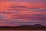 Clouds at sunset over wetland habitat, Whitewater Draw Wildlife Area, Arizona, USA Fotoprint van Bob Gibbons
