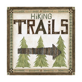 Hiking Trails Print by Cindy Shamp
