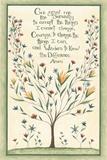Serenity Prayer Posters by Cindy Shamp