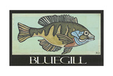 Bluegill Affiches par Shanni Welsh