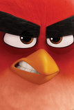 Angry Birds- Red Close-Up Posters