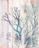 Coral Forest I Plakater af Ken Hurd