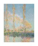 Les peupliers, 1891 Reproduction giclée Premium par Claude Monet
