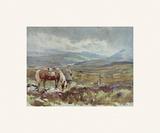 The Twelfth Premium Giclee-trykk av Lionel Edwards