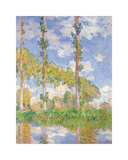 Poplars in the Sun, 1891 Reproduction giclée Premium par Claude Monet