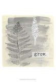 Garden Scrapbook I Pósters por June Erica Vess