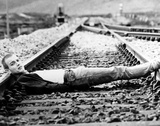Trainspotting Fotografia
