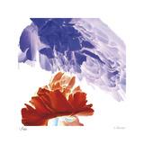 Botanical 9 Édition limitée par Kate Blacklock