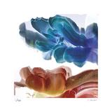 Botanical 12 Édition limitée par Kate Blacklock