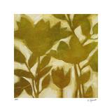 Bronze Botanical II Limitierte Auflage von Elise Remender