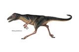 Dinosaur Poster di  Encyclopaedia Britannica