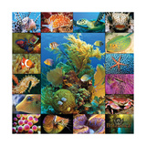 Aquatic Collage Posters por  Encyclopaedia Britannica