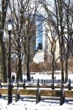 Snow in Central Park IV Impressão giclée por Philippe Hugonnard