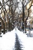 Snowy road Central Park Impressão giclée por Philippe Hugonnard