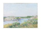 The Little Pond, Appledore, 1890 Giclee Print by Childe Hassam