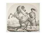 Wild Horses Fighting, C.1820 Giclée-Druck von Antoine Charles Horace Vernet