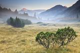 Fumo Valley, Adamello-Brenta Natural Park, Trentino Alto Adige, Italy. Sunrise with Fog In Impressão fotográfica por  ClickAlps