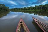 South America, Peru, Amazonia, Manu National Park, UNESCO World Heritage Photographic Print by Christian Heeb