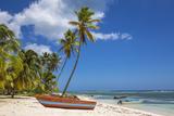 Dominican Republic, Punta Cana, Parque Nacional Del Este, Saona Island, Mano Juan Fotografie-Druck von Jane Sweeney