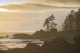 Canada, British Columbia, Vancouver Island, Port Renfrew, Juan Defuca Provincal Park Photographic Print by Christian Heeb