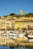 Le Vieux Port, Cannes, Alpes-Maritimes, Provence-Alpes-Cote D'Azur, French Riviera, France Lámina fotográfica por Jon Arnold