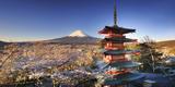 Japan, Yamanashi Prefecture, Fuji-Yoshida, Chureito Pagoda and Mt Fuji During Cherry Blossom Season Fotografie-Druck von Michele Falzone
