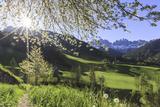 St. Magdalena and the Odle Group. Funes Valley South Tyrol Dolomites Italy Europe Impressão fotográfica por  ClickAlps