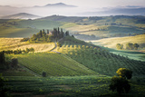 Val D'Orcia, Tuscany, Italy. a Lonely Farmhouse with Cypress and Olive Trees, Rolling Hills. Fotografie-Druck von Francesco Riccardo Iacomino