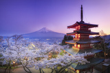 Japan, Yamanashi Prefecture, Fuji-Yoshida, Chureito Pagoda, Mt Fuji and Cherry Blossoms Reproduction photographique par Michele Falzone