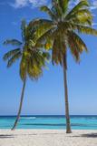 Dominican Republic, Punta Cana, Parque Nacional Del Este, Saona Island, Canto De La Playa Fotografie-Druck von Jane Sweeney