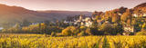 Pernand-Vergelesses and its Vineyards, Cote D'Or, Burgundy, France Fotografisk trykk av Matteo Colombo