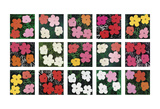 Flowers (various), 1964 - 1970 Affiches par Andy Warhol
