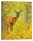 White Tail Deer Gallery Wrapped Canvas Set by Iris Scott