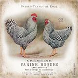 Chicken Pair II Poster von Gwendolyn Babbitt