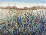 Seasons End Giclee Print by Tim O'toole