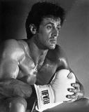 Sylvester Stallone Action Pose Portrait Foto von  Movie Star News