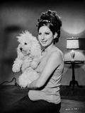 Barbra Streisand Posed With Dog Fotografia por  Movie Star News