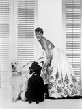 Audrey Hepburn and Dogs Foto av  Movie Star News