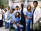 Grey's Anatomy Family Picture Foto di  Movie Star News