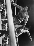 Sylvester Stallone Falling Down on a Boxing Ring Photo by  Movie Star News