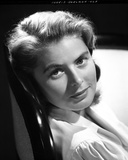 Ingrid Bergman Leaning and wearing a Blouse Photo by E Bachrach
