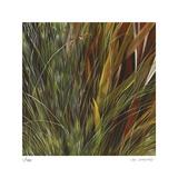 Flax and Fauna Limited edition van Jan Wagstaff